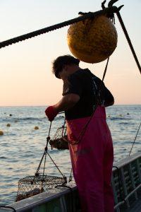 真鶴漁師の岩牡蠣養殖の挑戦|真鶴真鶴漁師の岩牡蠣養殖の挑戦|真鶴岩カキ養殖プロジェクト